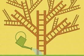 career-lattice
